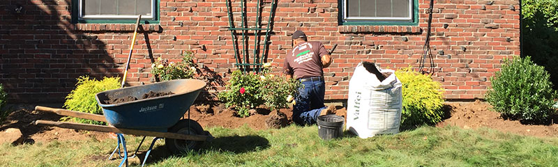 A David Lawn Care Builds Renewaintains Landscapes Of All Types Home Owners General Contractors Commercial Developers Landscape Architects And
